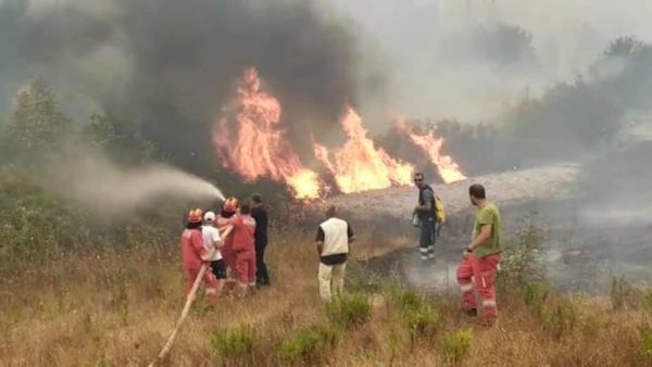 zjarret ne shqiperi 600x338 1 600x338